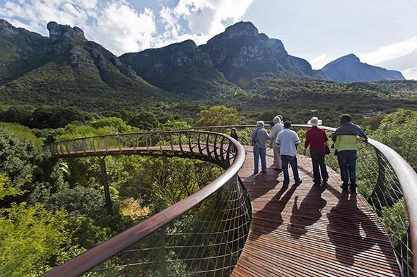 South Africa Safari's That's a One Time Experience